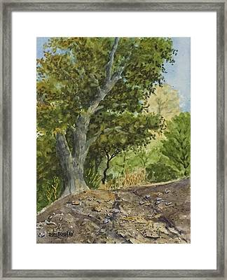 Off Road Trail Framed Print by Don Bosley