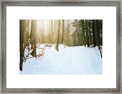 Off The Beaten Path Framed Print