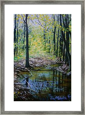 Off The Trail Framed Print