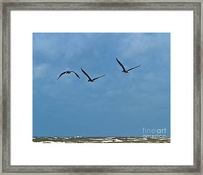 Framed Print featuring the photograph Off We Go by Ken Frischkorn