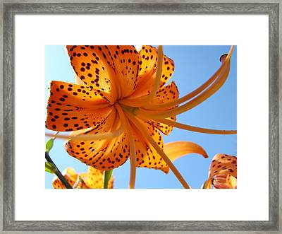Office Artwork Tiger Lily Flowers Art Prints Baslee Troutman Framed Print by Baslee Troutman