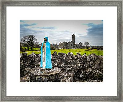 Official Greeter At Ireland's Quin Abbey National Monument Framed Print