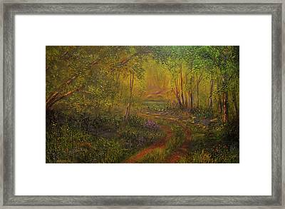 Offroad Drive To The Lake Framed Print