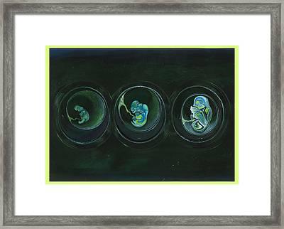 Offspring Framed Print by Melanie Imough