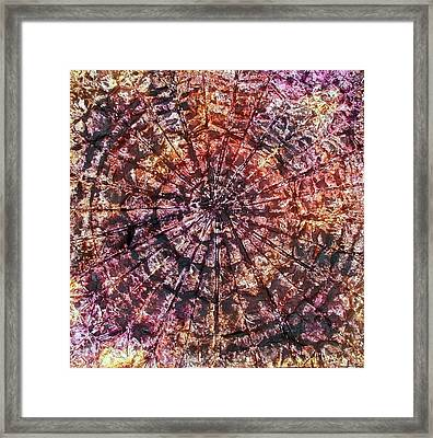 40-offspring While I Was On The Path To Perfection 40 Framed Print
