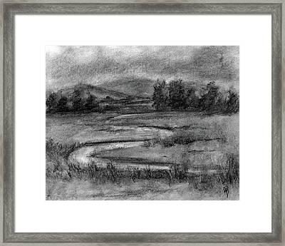 Ogden Valley Marsh Study Framed Print