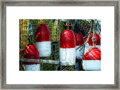 Oh Bouy Framed Print by Gina Cormier