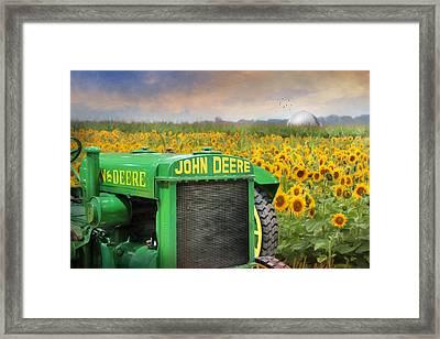 Oh Deere Framed Print by Lori Deiter