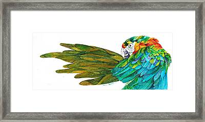 Oh Mya Framed Print by Sherry Shipley