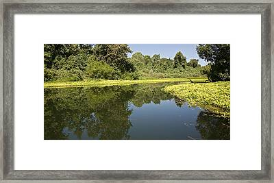 Oh The Calm Of It All Framed Print by Charlie Osborn