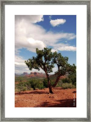 Framed Print featuring the photograph Oh The Scenery by Barbara MacPhail