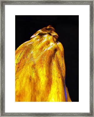 Ohea Framed Print by Heather S Huston