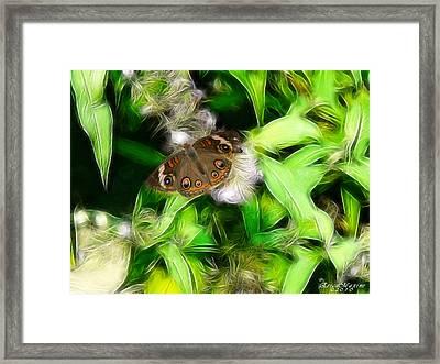 Framed Print featuring the photograph Ohio Buckeye by EricaMaxine  Price