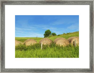 Ohio Landscape In Summer Framed Print