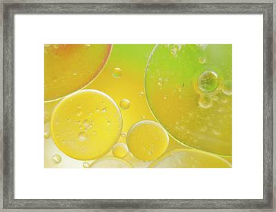 Oil And Water Bubbles  Framed Print