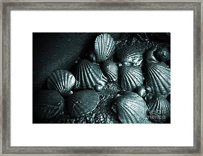 Oil Spill Framed Print by Carlos Caetano
