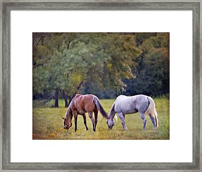 Ok Horse Ranch_2a Framed Print