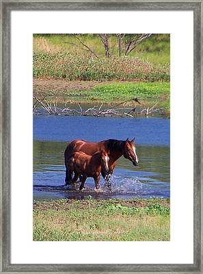 Okay Time To Go. Framed Print by Lilly King
