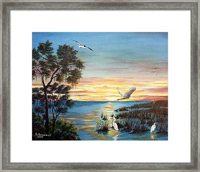 Okeechobee Sunset Framed Print