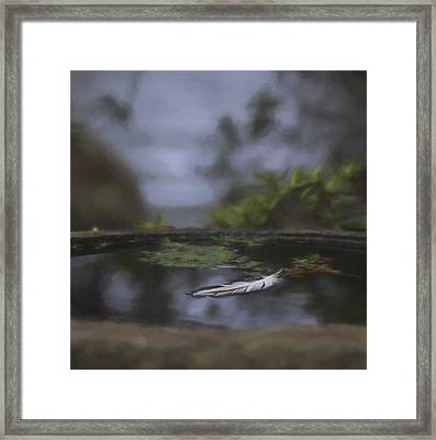 A Feeling Of Floating Weightlessly - Digitally Painted Framed Print by Marilyn Wilson