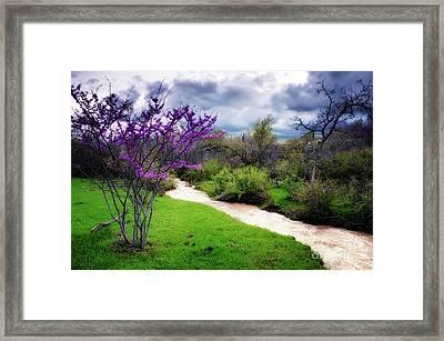 Oklahoma Spring Storm Framed Print