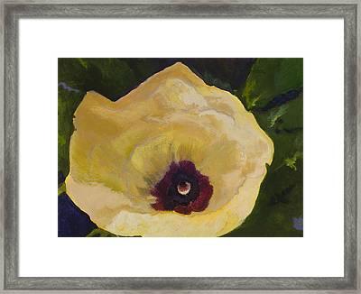 Okra Flower Framed Print by Jimmie Trotter