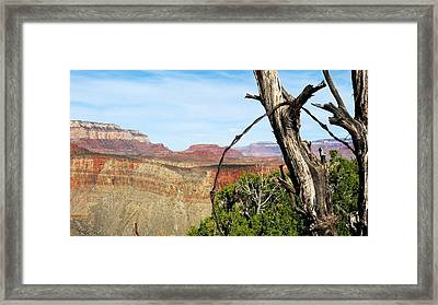 Ol' Fence On Horseshoe Mesa Framed Print
