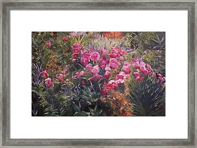 Olbrich Garden Series -  Garden 1    Framed Print by Lisa Konkol