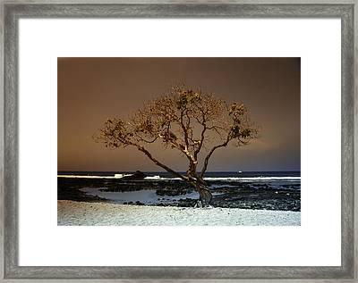 Old A Beach Framed Print