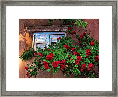 Old Adobe With Roses Framed Print
