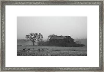 Framed Print featuring the photograph Old Barn In Fog - Black And White by Kirkodd Photography Of New England