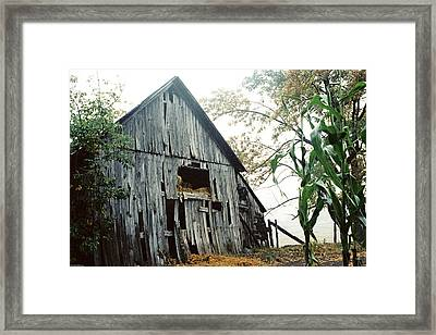 Old Barn In The Morning Mist Framed Print