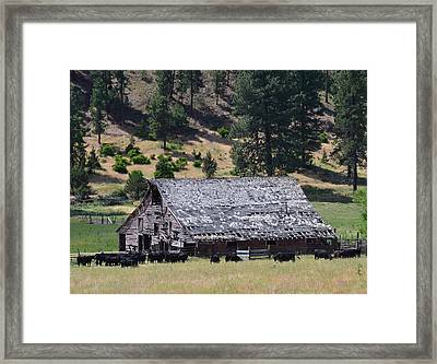 Old Barn Framed Print by Linda Larson