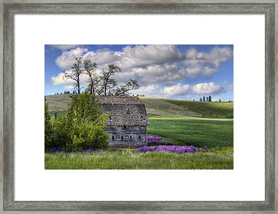 Old Barn - Palouse - Washington Framed Print by Nikolyn McDonald