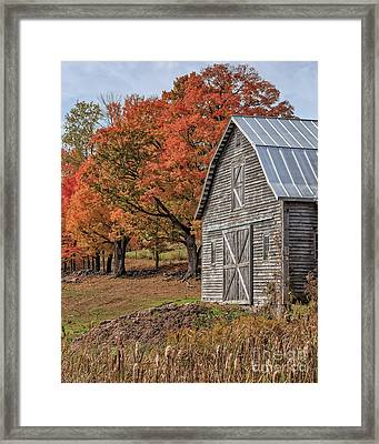Old Barn With New England Foliage Framed Print by Edward Fielding