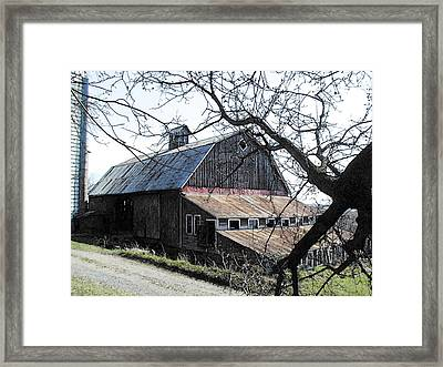 Old Barn With Tree Watercolor Framed Print by Laurie With