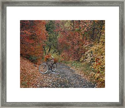 Old Bike In Autumn Framed Print by Leland D Howard
