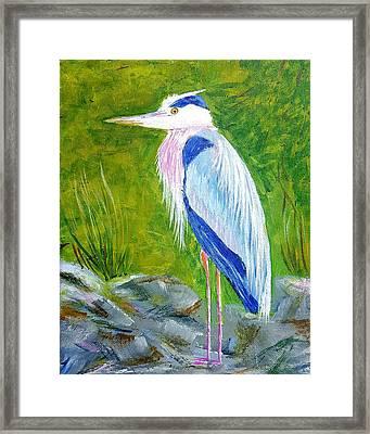 Old Blue Fisherman Framed Print by Steve Duke - Artist