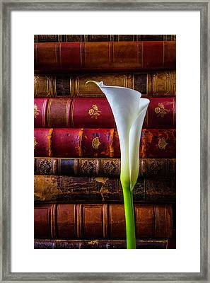 Old Books And Calla Lily Framed Print