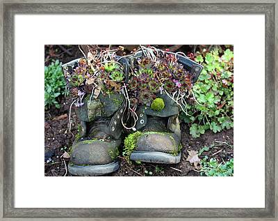 Old Boots New Purpose Framed Print by Kami McKeon