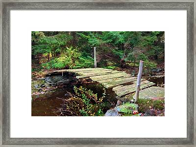Framed Print featuring the photograph Old Bridge by Francesa Miller