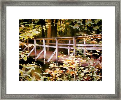 Old Bridge In The Woods In Color Framed Print