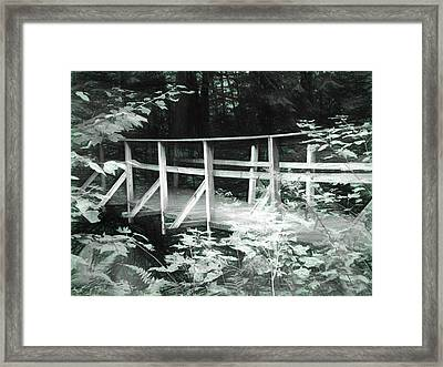 Old Bridge In The Woods Framed Print