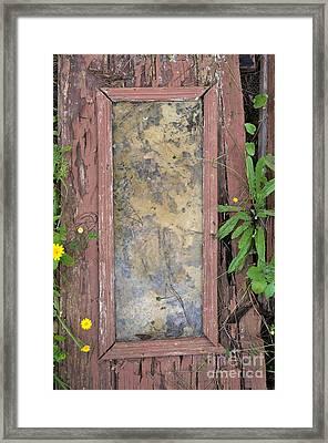 Old Broken Door And Nature Framed Print