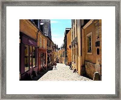Old Buildings In France Framed Print