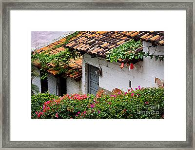 Old Buildings In Puerto Vallarta Mexico Framed Print by Elena Elisseeva
