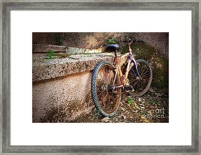 Old Bycicle Framed Print