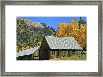 Old Cabin In St Elmo Colorado Framed Print by Dan Sproul