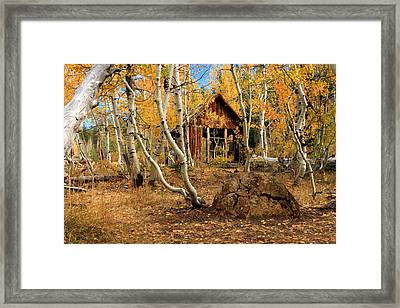 Old Cabin In The Aspens Framed Print by James Eddy