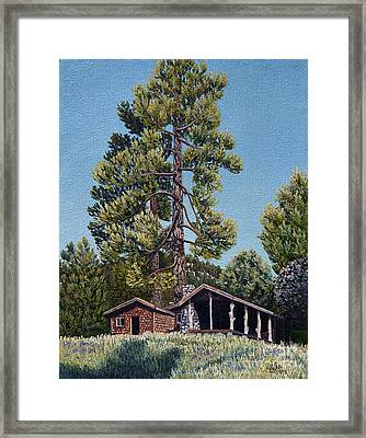Old Cabin In The Pines Framed Print by Jiji Lee